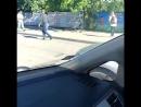 Мужчина переводит уточек через дорогу в Калининграде