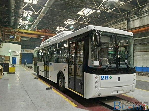 Новые автобусы закупил хабаровский предприниматель