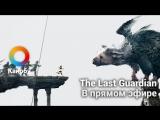 [21:00] The Last Guardian в прямом эфире