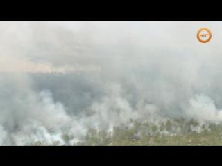 Начало пожароопасного сезона и погода летом в Ноябрьске!