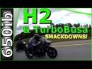 Ninja H2 BEATS Turbo Busa!!! | SMACKDOWN!!!