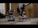 Robosapien vs Roboquad WowWee Robots Which is Best?