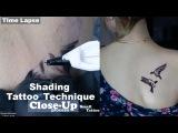 Процесс и техника нанесения татуировки - птицы миниатюра в стиле реализм, черно-белые, ласточки