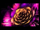 Solfeggio 852 963 Hz ➤ Limpeza da Glândula Pineal Abertura do 3º Olho Flauta Tambores