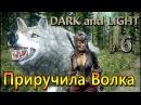 Dark and Light 06 Приручила белого Волка