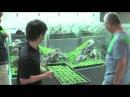 龍王石と佗び草の180cm水槽 A 180cm aquarium tank with Ryuoh stone and Wabi kusa