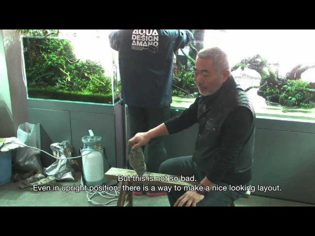 TAKASHI AMANO LAYOUT SEMINAR A 180cm aquarium tank No.6 . 2012.02.22