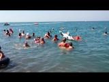 Как хорошо в жаркую погоду искупаться в Черном море