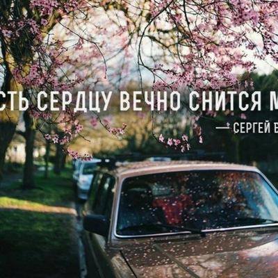Айнур Тагиева