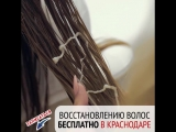 Бесплатная терапия по восстановлению волос в Краснодаре