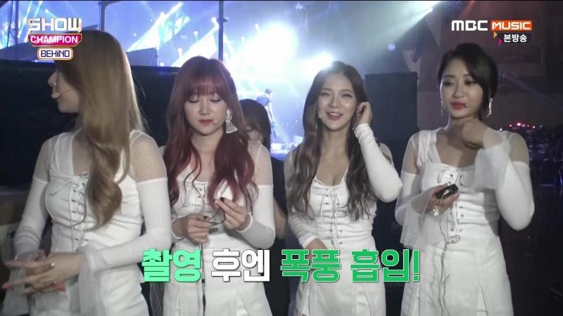 VK | 170627 Nine Muses за кадром Show Champion (쇼챔피언 비하인드) E52 - 나인뮤지스 cut
