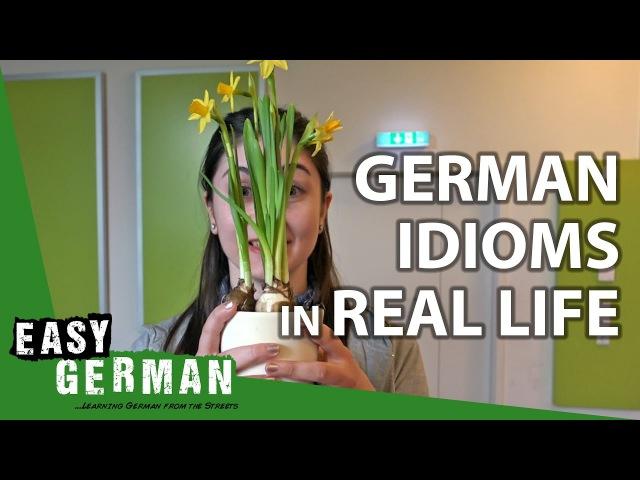 GERMAN IDIOMS (Part I)   Super Easy German (32)