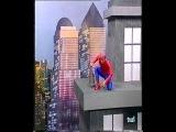 Cruz y raya - Varios de Spiderman, recopilatorio