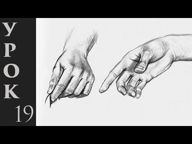 Как рисовать руки человека Простые приемы и правила
