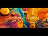 Хаос красок и гармония цвета