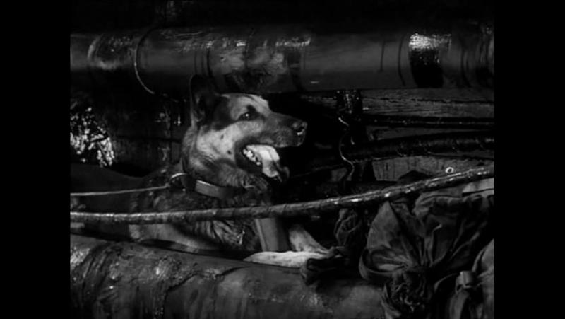Čtyři-z-tanku-a-pes/Czterej-pancerni-i-pies-20%2F21-TV-seriál-1966,-CZ