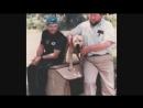 ТОП-3 Питбулей Чемпионов мира по собачьим боям