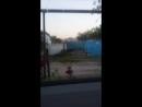 Руслан Алиев - Live
