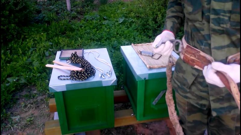 Роеловство Подготовка к Поимке Роя Пчеловодство Для Начинающих