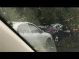 Ураган в Москве 29/05/2017