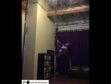 троечка комбинированная рептилия.видео от Phoenix из сша.