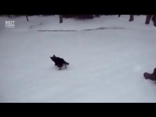 Как правильно веселится зимой