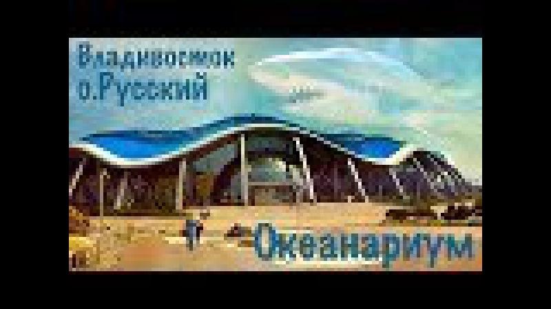 Приморский океанариум 1. Прогулочная зона океанариума.