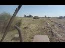 Трактор т-25 и пресс FAHR HD20