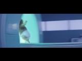Музыка из рекламы Kia Soul TurboThe Turbo Hamster Has Arrived (2017) 480
