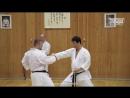 Каратэ Шотокан. Уроки Олега Цоя. Работа ног в стойке в блоках и ударах руками