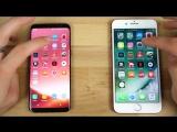 Тест на скорость работы Samsung Galaxy S8 vs iPhone 7 Plus