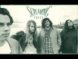 Screaming Trees - Song of a Baker (Small Faces cover)