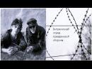 РАРИТЕТ Е Летов и Е Деев Аудио П О Г О 1988