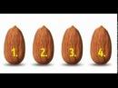 Что произойдет с телом если съедать 4 миндальных ореха каждый день