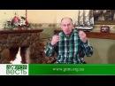 МОГУЩЕСТВЕННОЕ ИМЯ ИИСУСА Добрая Весть с Богданом Демборинским