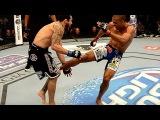 5 САМЫХ ЖЕСТКИХ ЛОУ КИКЕРОВ В UFC!