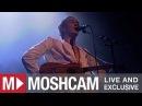 Patrick Wolf - The Libertine | Live in Sydney | Moshcam