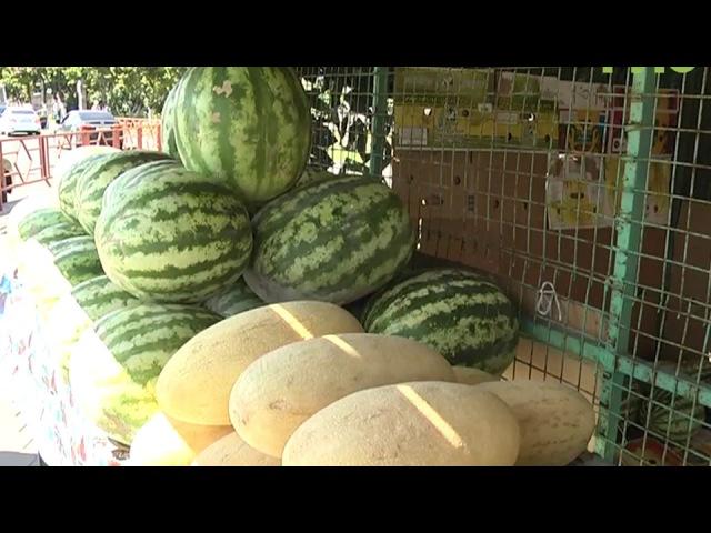 Международный день арбуза в Самаре. Как выбрать ягоду, чтобы она оказалась сочно...