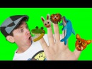 Finger Family Song - Wild Animals with Matt Action Song, Nursery Rhyme Learn English Kids