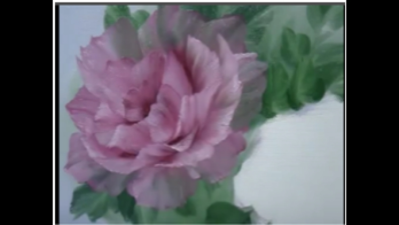 NO2 Pink Rose Oil Painting