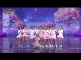 Cosmic Girls - Secret (2016 KBS Song Festival)