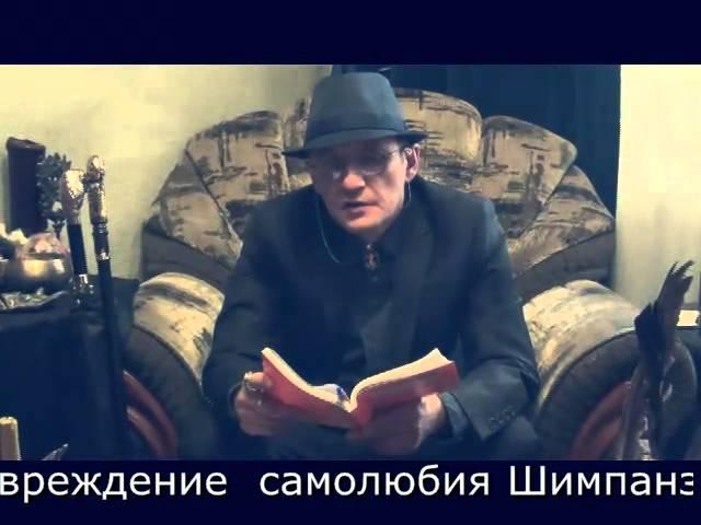 ГрифоноКод 23. Кот Васька. 9.