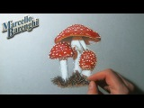 Fly Agaric Speed Drawing