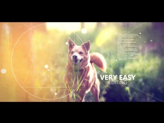Ink Geometry Slideshow - VideoHive (After Effects)