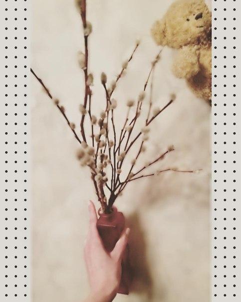 фото из альбома Екатерины Катиной №8