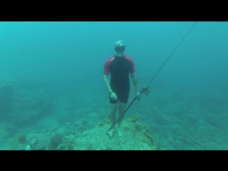 Amateur freediving/Sibrenkov