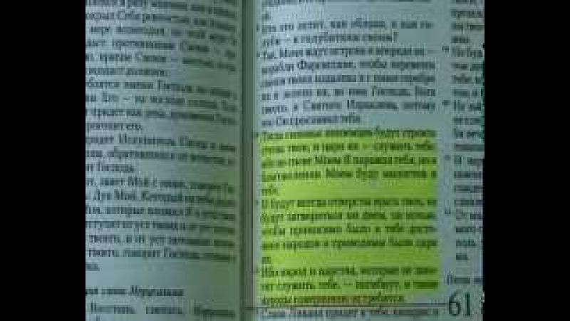 Синайский турпоход библия как она есть Генерал Петров К П КОБ