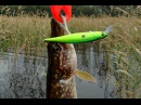 Lucky Craft Slender Pointer 127 MR. Pike fishing.