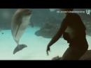 Девушка устроила шоу для дельфинов