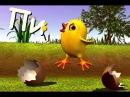 Цыплёнок Пи - детские популярные песни